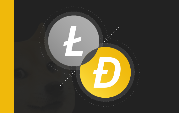 Case Study: Merged Mining in Dogecoin and Litecoin